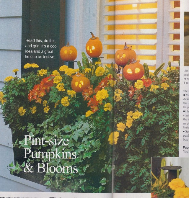 Photo courtesy of Southern Living, October 2005, Ralph Anderson.