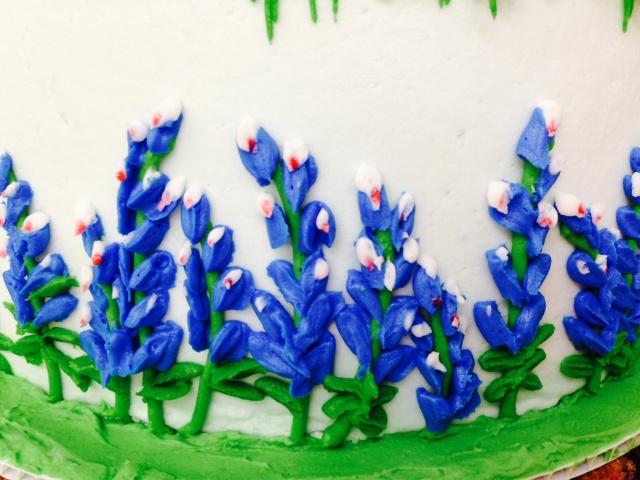 Icing bluebonnets closeup