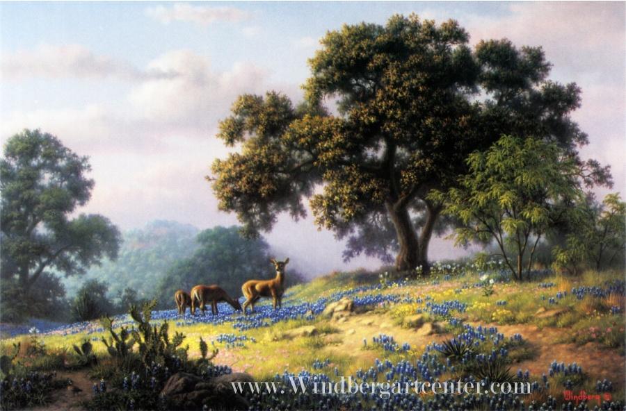 Dalhart Windberg Texas landscape deer bluebonnets